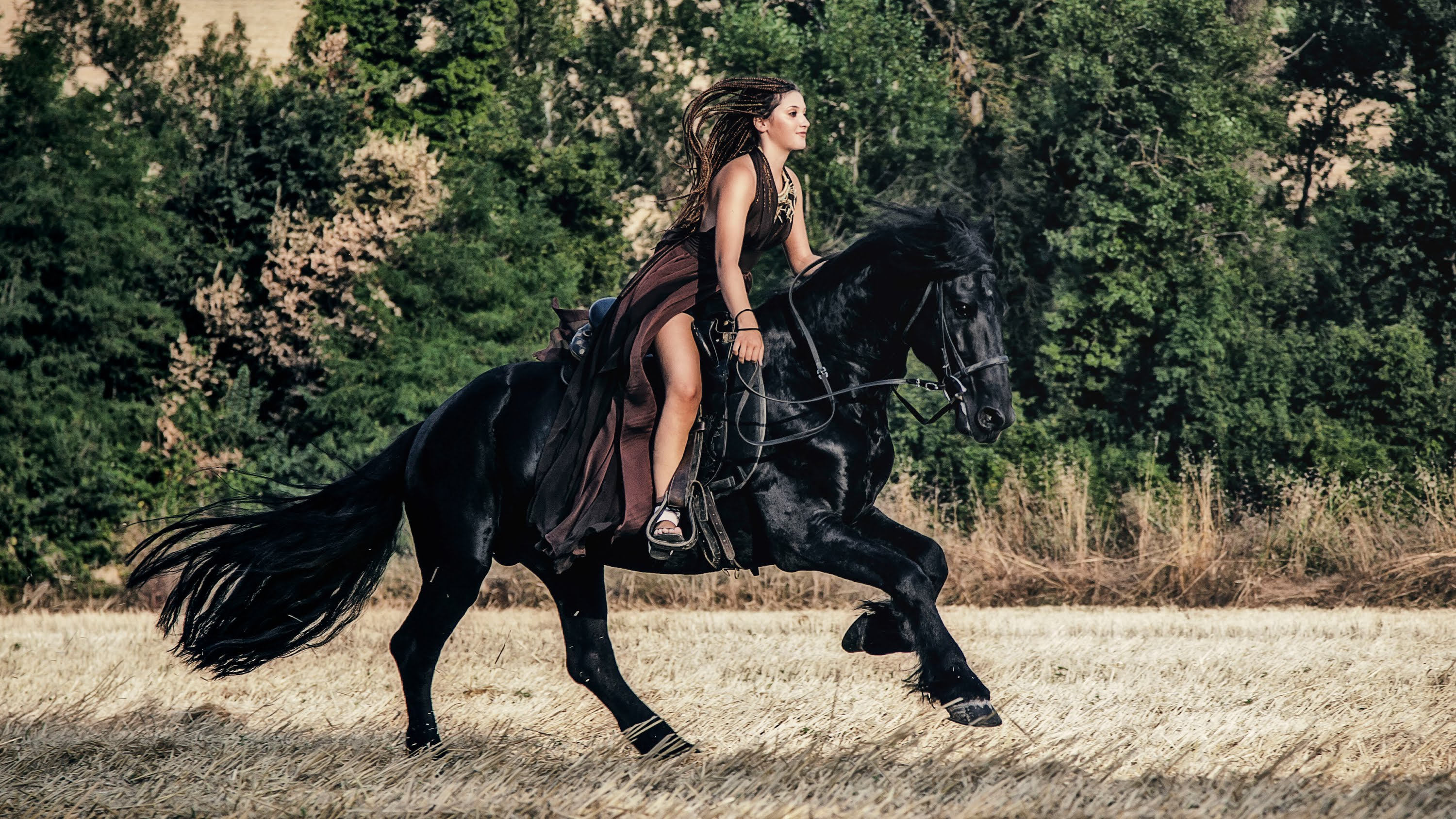 woman riding friesian